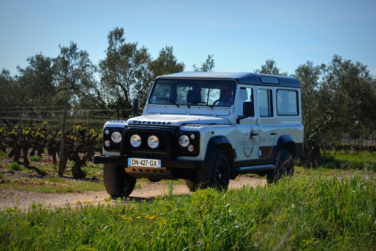 Véhicule Vign'O vins tourisme - Balades vigneronnes