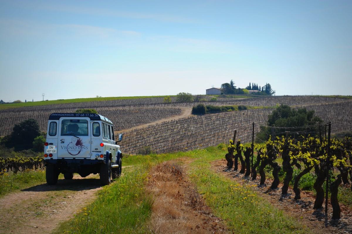 Véhicule Vign'O vins tourisme - balade