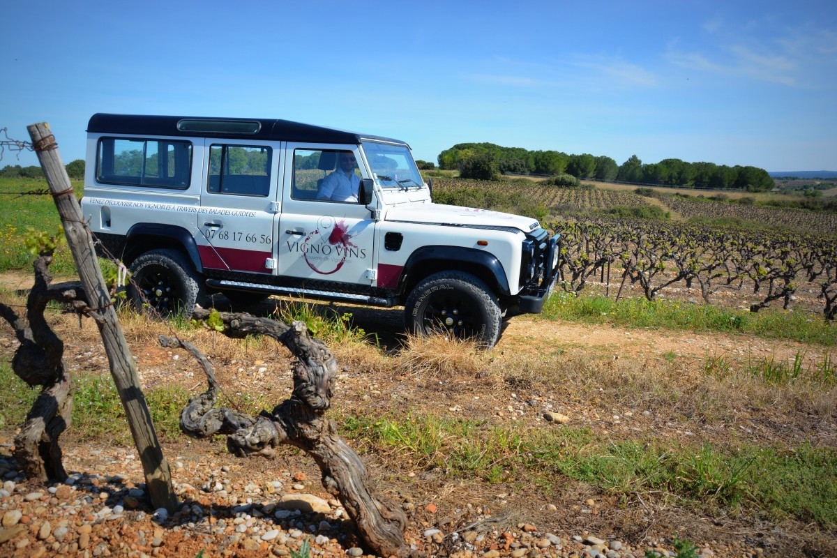 Véhicule Vignovins tourisme