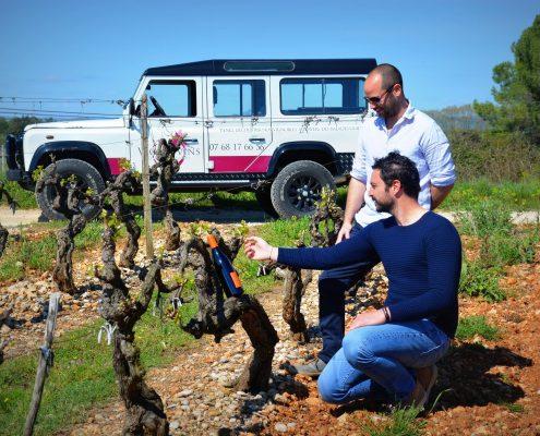 Découverte des cépages et de l'univers viticole