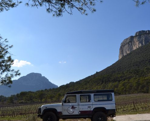 Vign'O vins - Balades vigneronnes en 4x4